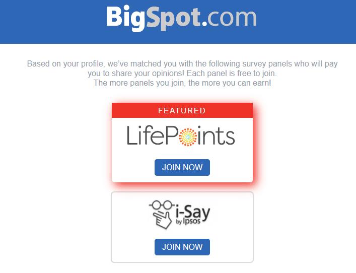 BigSpot surveys